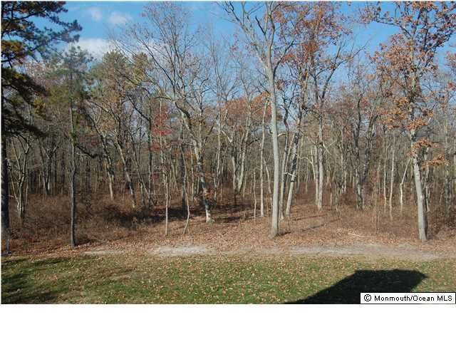 Additional photo for property listing at 3 Curtins Cnr  Millstone, New Jersey 08510 États-Unis
