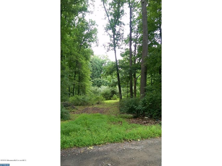 Land for Sale at 4 Burd Lane Ringoes, New Jersey 08551 United States