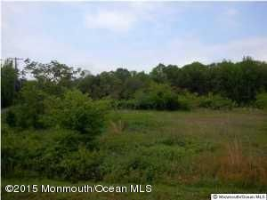Land for Sale at 15 Burnt Tavern Road Clarksburg, New Jersey 08510 United States