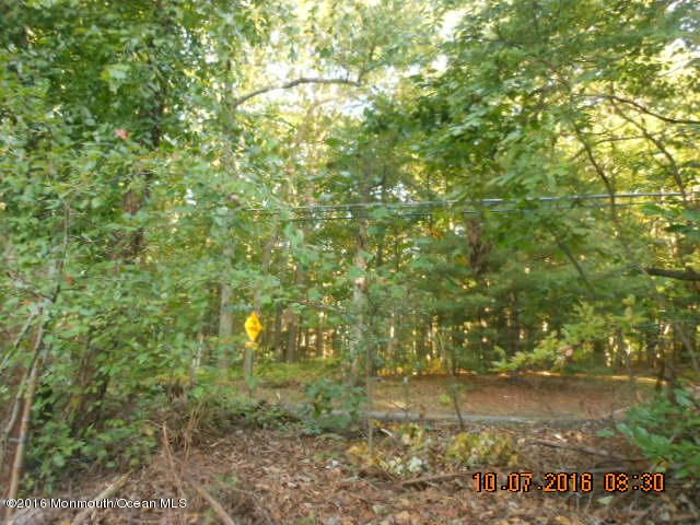 Additional photo for property listing at 473 Texas Road  Morganville, Nueva Jersey 07751 Estados Unidos
