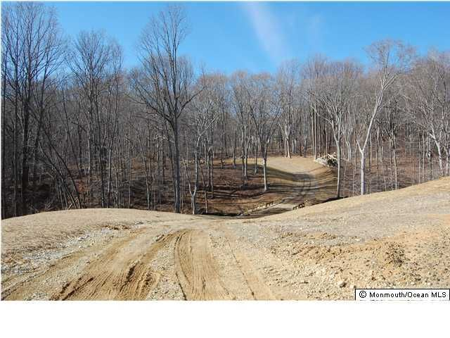 Land for Sale at 213 Walnut Drive Marlboro, New Jersey 07746 United States