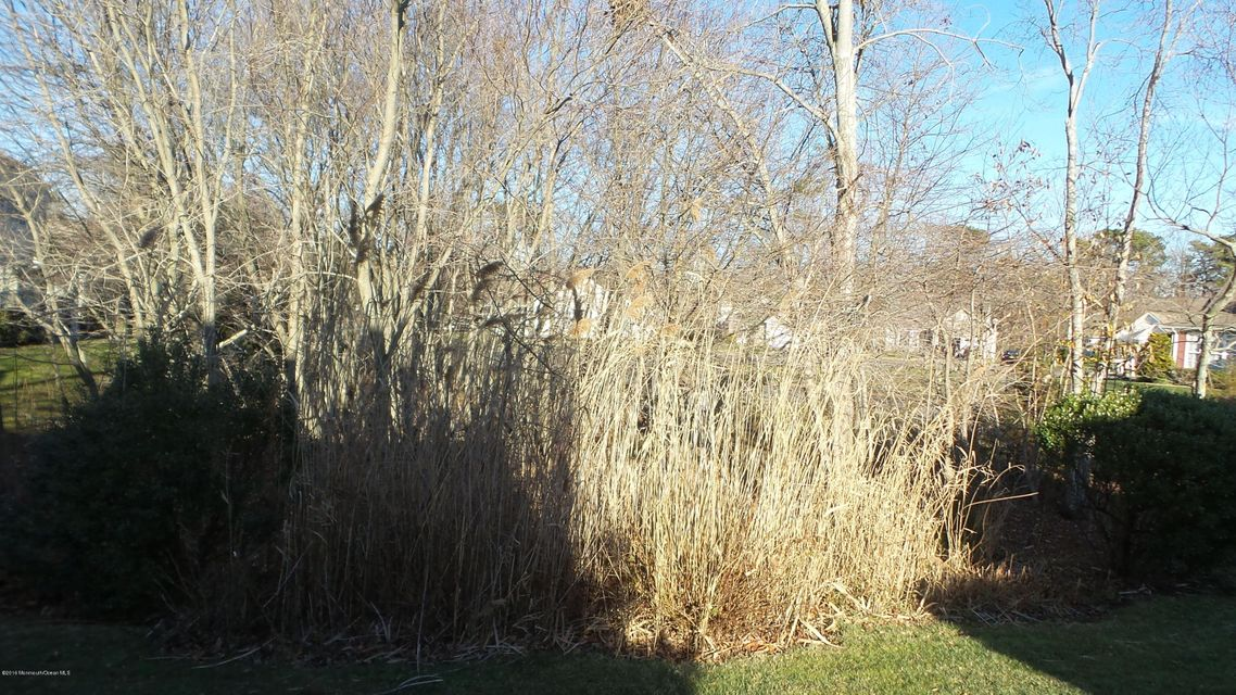 Additional photo for property listing at 19 Sunflower Lane  Brick, New Jersey 08724 United States