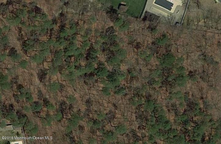 Land for Sale at Nolan Bayville, New Jersey 08721 United States