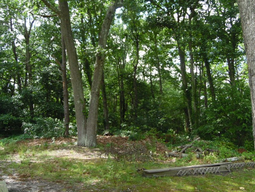 Additional photo for property listing at 910 Gloucester Avenue  Brick, Nueva Jersey 08723 Estados Unidos
