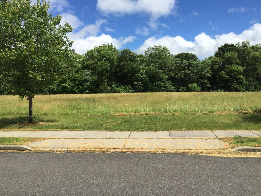 Land for Sale at 309 Fieldcrest Drive New Egypt, New Jersey 08533 United States