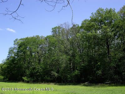 Additional photo for property listing at 88 Hopkins Road  New Egypt, Nueva Jersey 08533 Estados Unidos