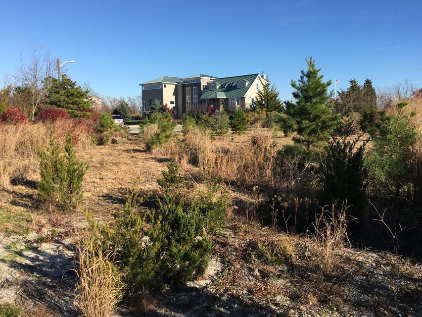 Additional photo for property listing at 8 Juniper Place  Little Egg Harbor, New Jersey 08087 United States
