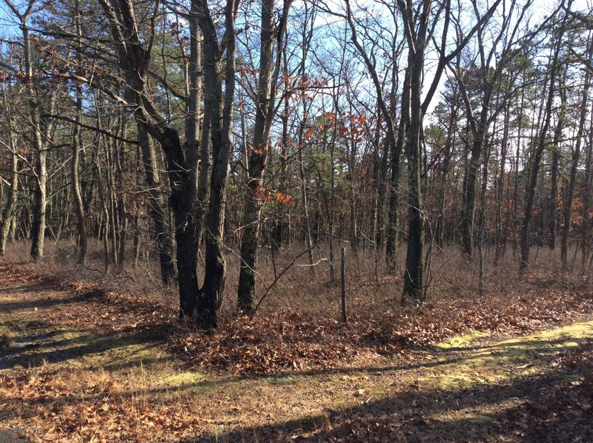 Additional photo for property listing at 4 Turkey Swamp Road  Freehold, New Jersey 07728 États-Unis