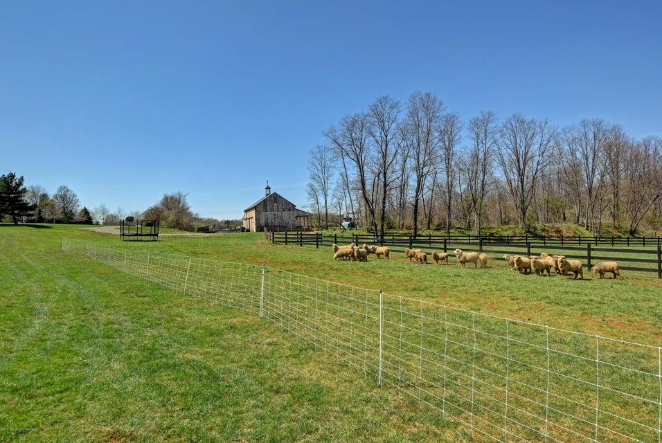 064_North Paddocks and Amish Barn