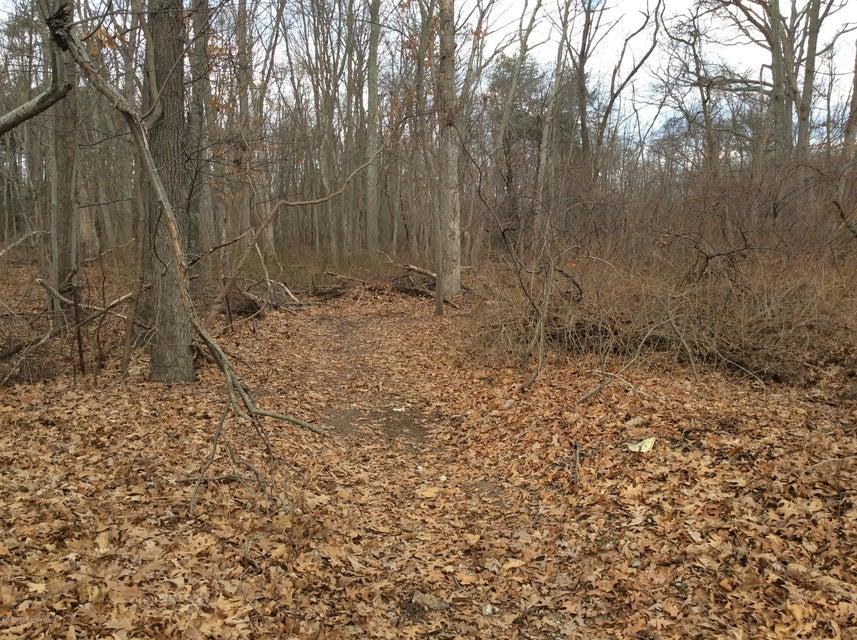 Terrain pour l Vente à Hulses Corner Road Howell, New Jersey 07731 États-Unis