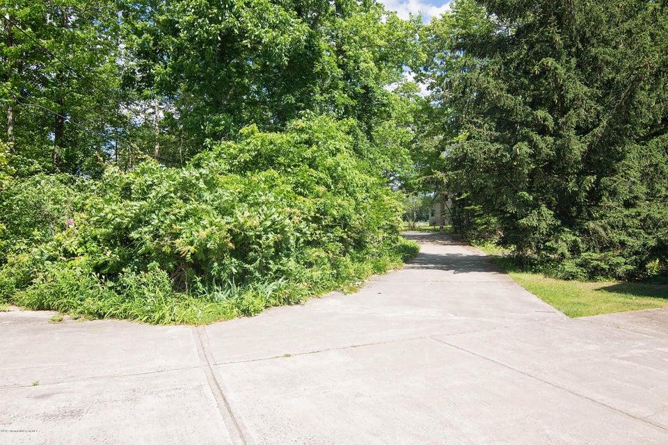 _RMJ4209.jpg driveway