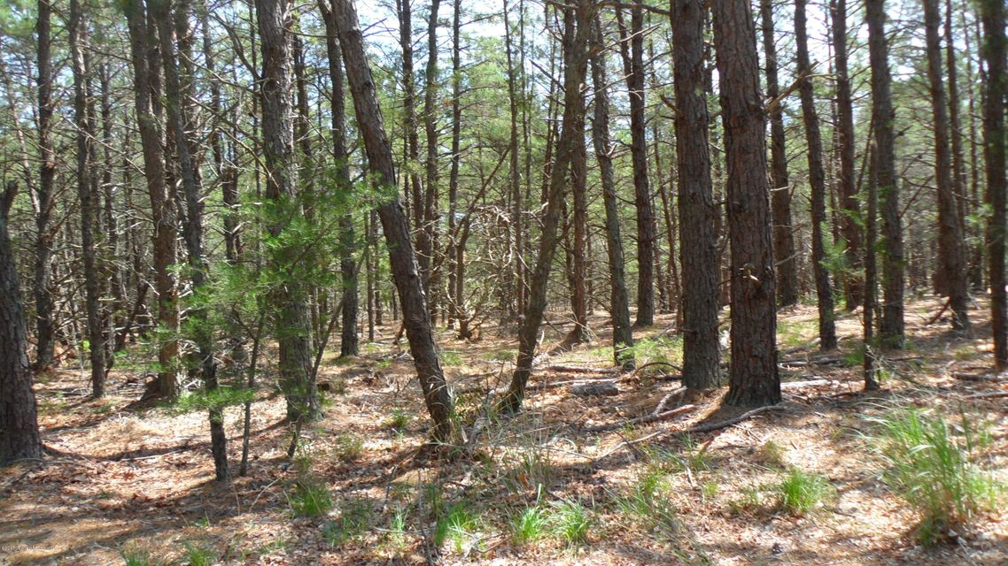 Land for Sale at Forge Road West Creek, New Jersey 08092 United States