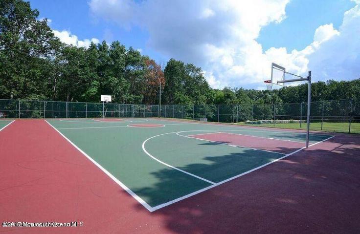 60 acres basketball