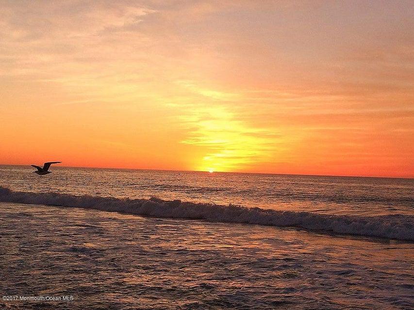 Manasquan Beach - Morning Walks