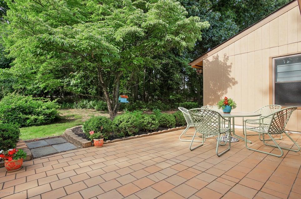 Tiled Patio overlookiing Garden Beds