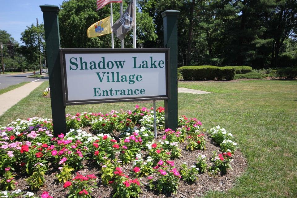 Shadow Lake Village