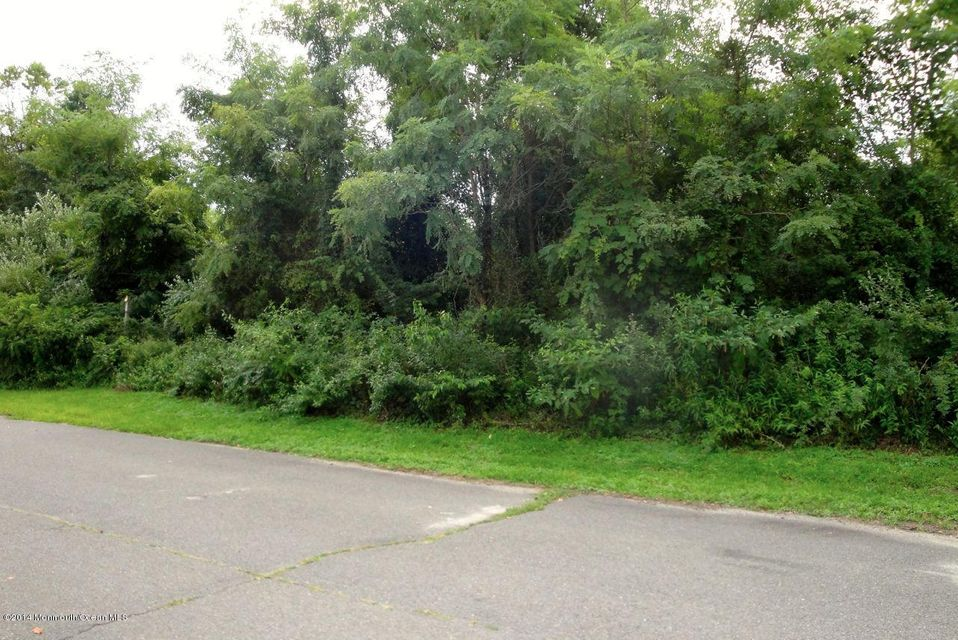 Land for Sale at 4 Nash Drive 4 Nash Drive Cookstown, New Jersey 08511 United States