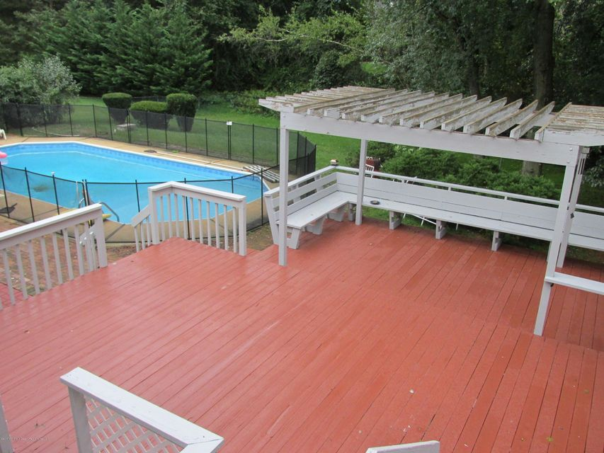 Patio, Pool and Back Yard