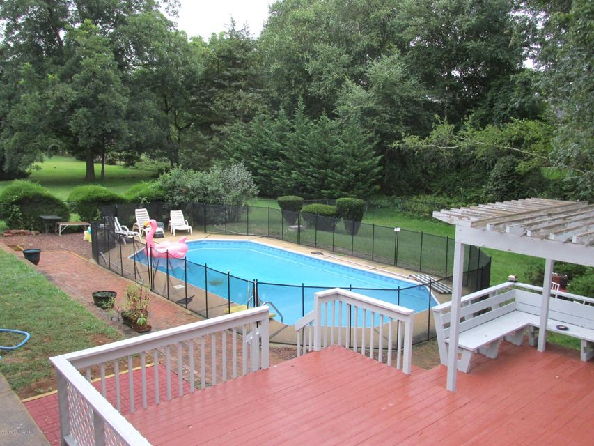 Pool, Patio and Back Yard