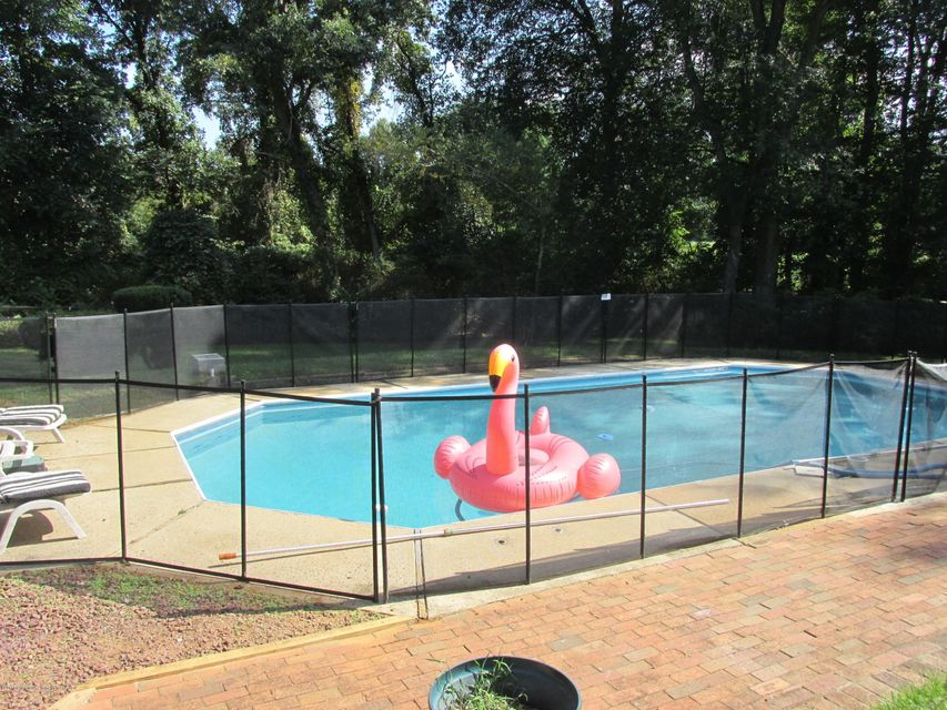Pool and Flamingo Float