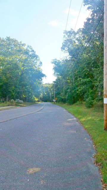 Land for Sale at 77 Ivins Drive 77 Ivins Drive Plumsted, New Jersey 08533 United States