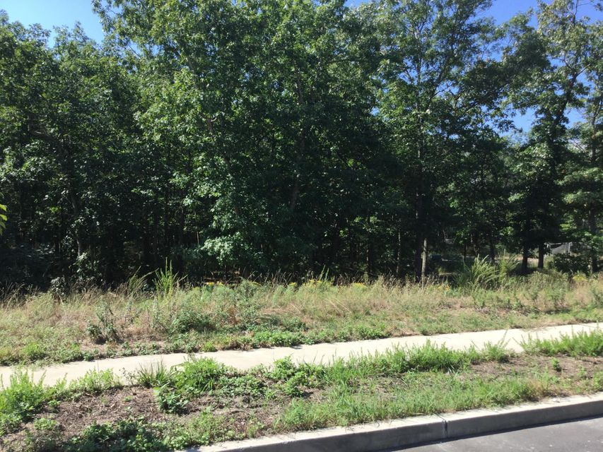 Additional photo for property listing at Hoyt Street Hoyt Street Forked River, New Jersey 08731 United States