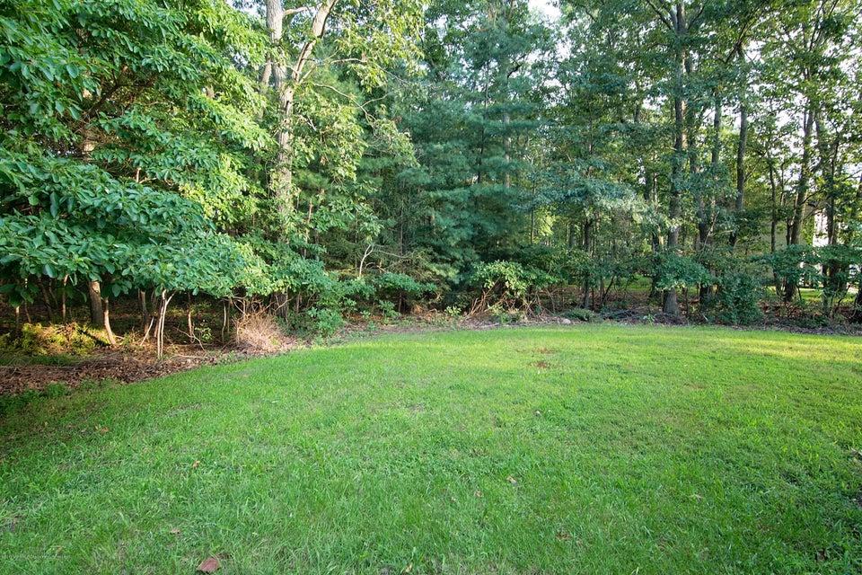 _RMJ8274.jpg backyard