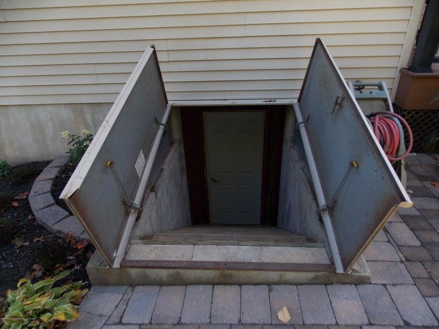 Bilco Door