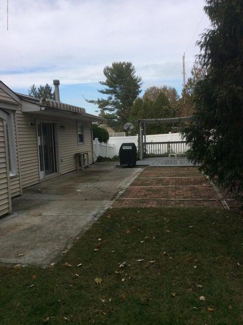 rear yard 2