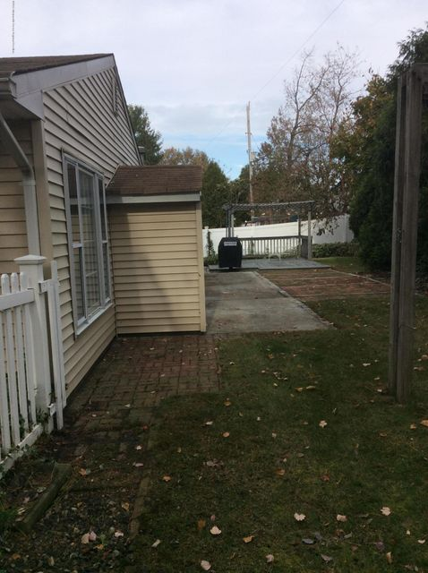 rear yard with shed