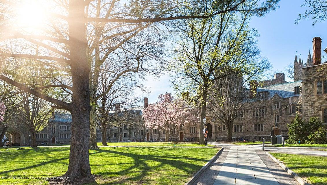 Princeton SIZED