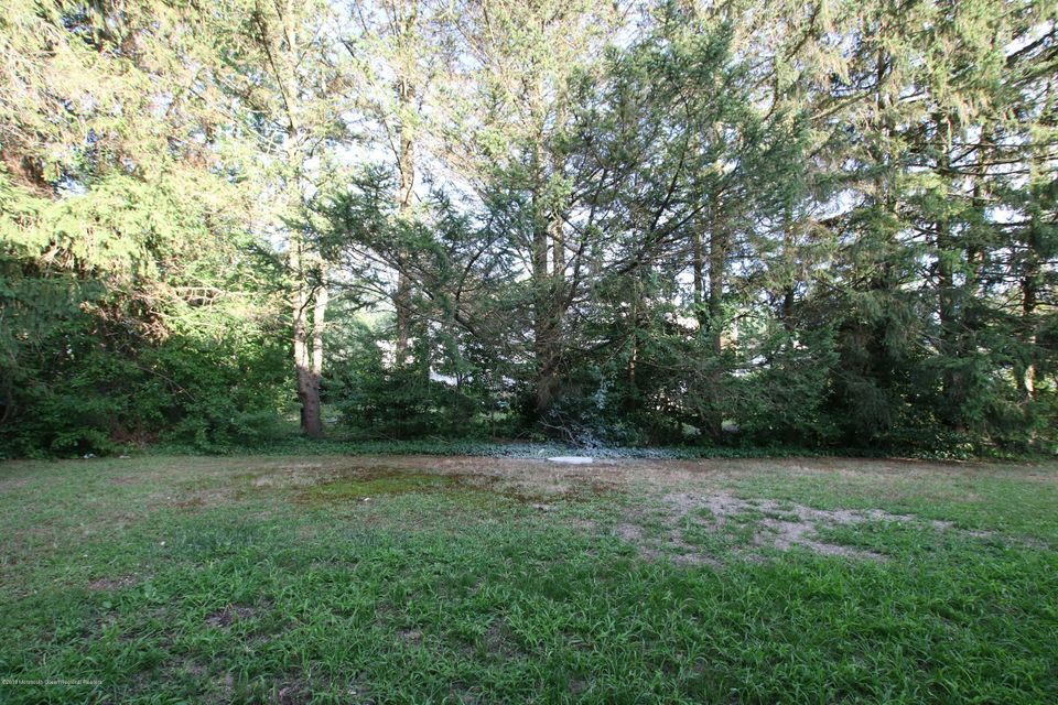 Private Backyard - View 1
