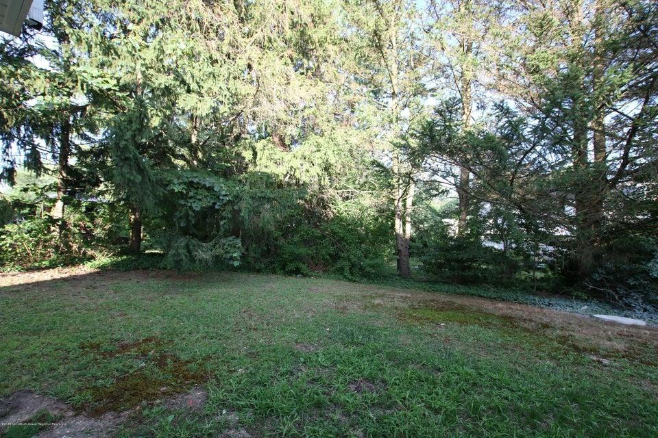 Private Backyard - View 2