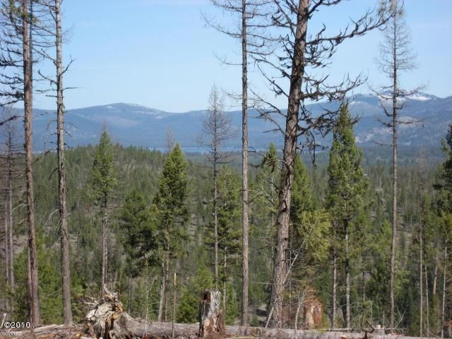 Land for Sale at 265 Hubbart Dam Road Marion, Montana 59925 United States