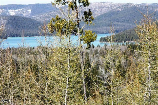 Land for Sale at Ashley Lake Road Ashley Lake Road Kila, Montana 59920 United States