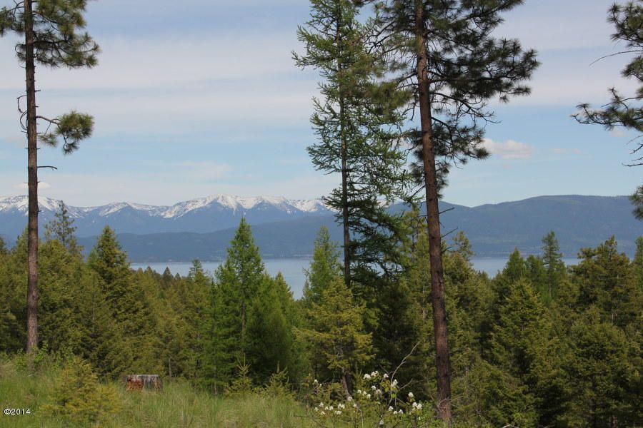 Additional photo for property listing at Timber Rock Road  Lakeside, Montana 59922 United States