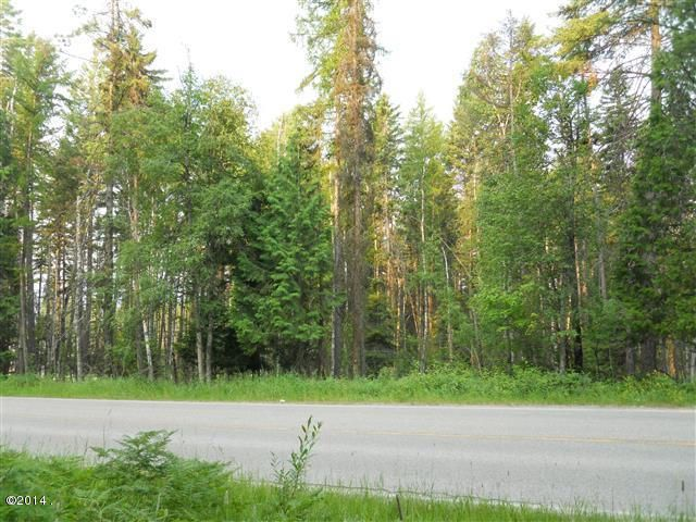 Additional photo for property listing at Big Mountain Road Big Mountain Road Whitefish, Montana 59937 United States
