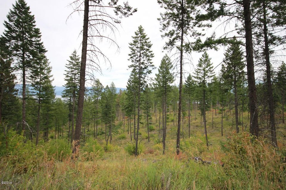 Additional photo for property listing at Hersman Road Hersman Road Lakeside, Montana,59922 Verenigde Staten