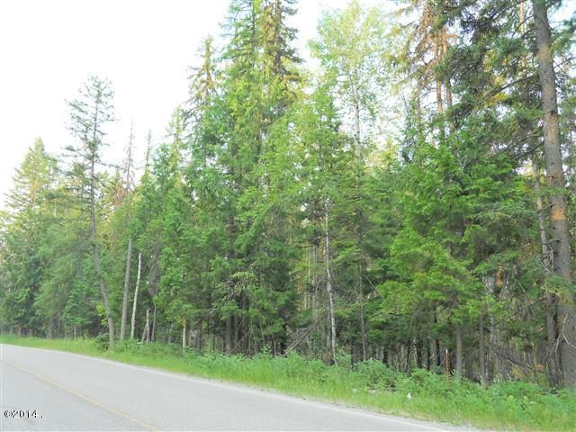 Additional photo for property listing at Big Mountain Road  Whitefish, Montana 59937 United States