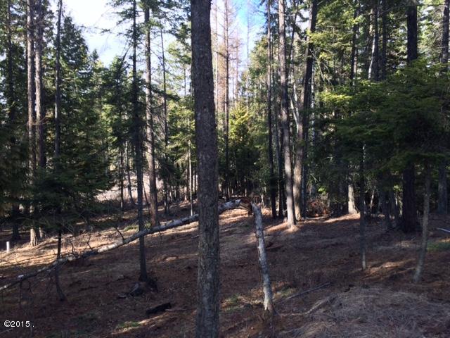 2375 Big Mountain Whitefish, Montana - 333007