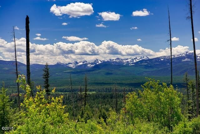 Land for Sale at Barber Creek Road Condon, Montana 59826 United States