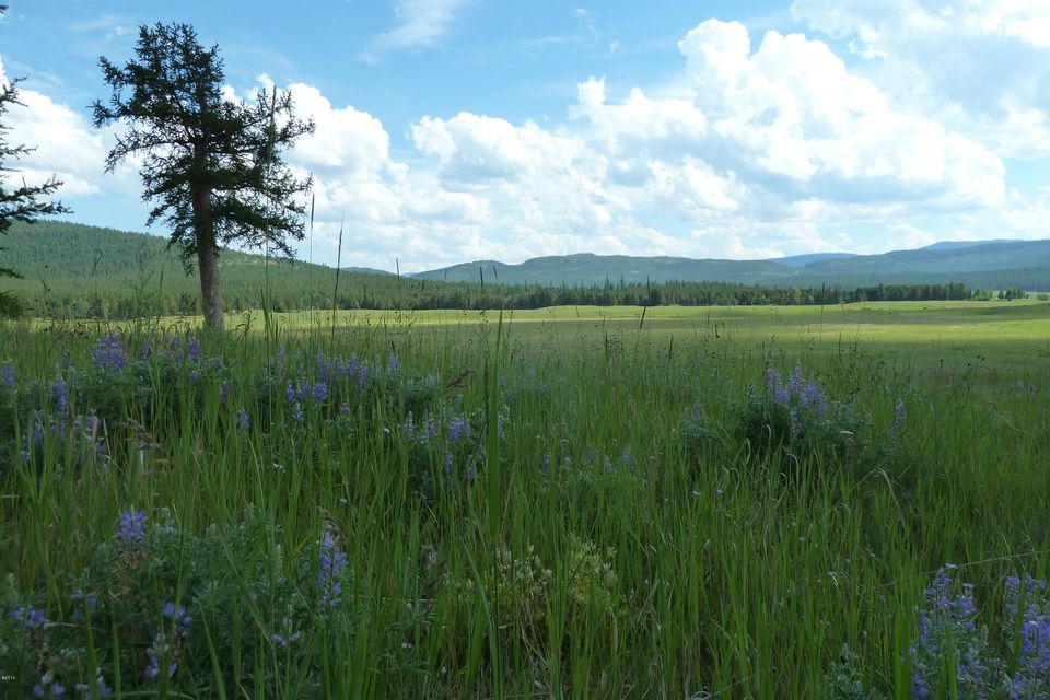 Land for Sale at 9850 Lost Prairie Road Marion, Montana 59925 United States