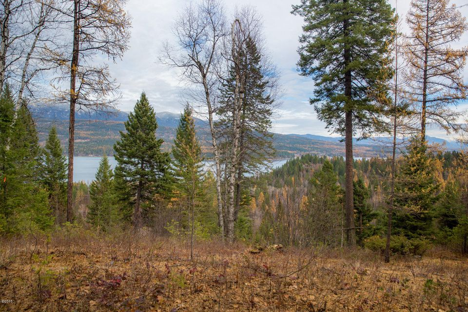 Additional photo for property listing at 2927 Osprey Lane 2927 Osprey Lane Whitefish, Montana 59937 United States