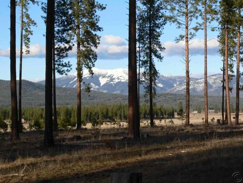 Land for Sale at Sand Hill Road Plains, Montana 59859 United States