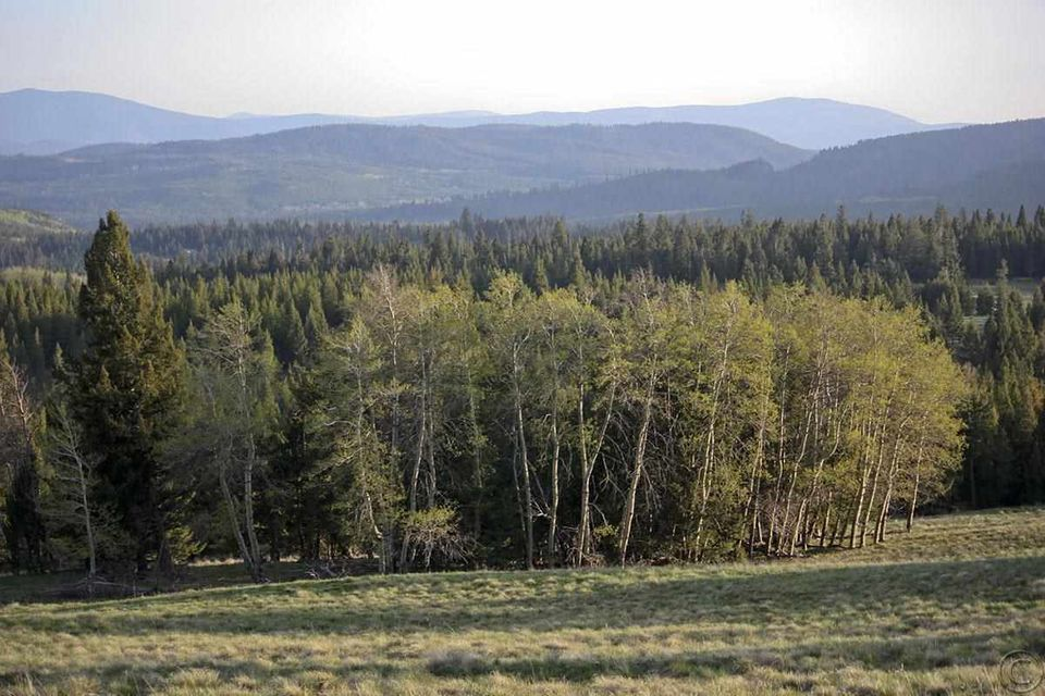 Additional photo for property listing at Alice Creek Road  Lincoln, Montana 59639 United States