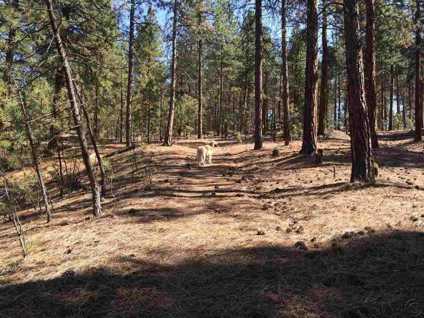 Additional photo for property listing at Weber Butte Trail  Corvallis, Montana 59828 United States