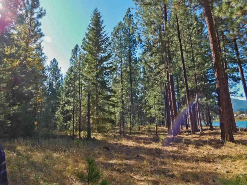Additional photo for property listing at Lewis Lane  Thompson Falls, Montana 59873 United States