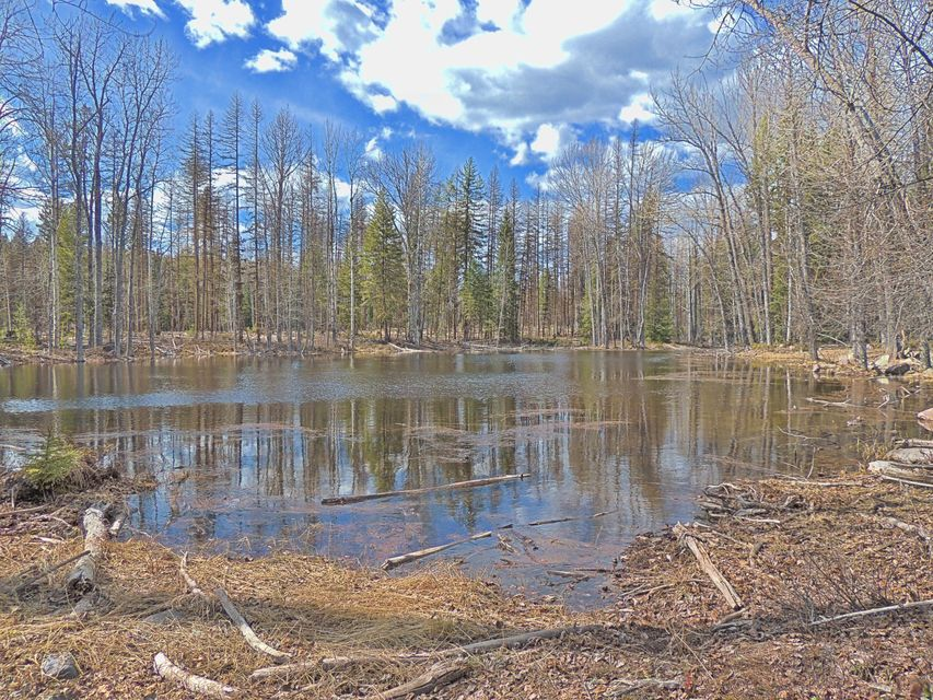 Additional photo for property listing at 615 Potter Creek Road 615 Potter Creek Road Olney, Montana 59927 United States
