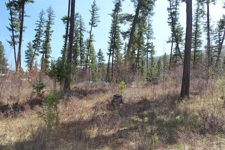 Additional photo for property listing at Swan Cove Drive Swan Cove Drive Bigfork, Montana 59911 United States