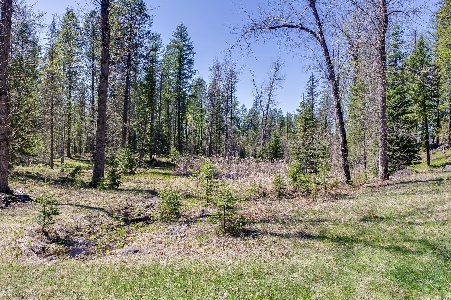 Additional photo for property listing at 205 Landmark Lane  Bigfork, Montana 59911 United States